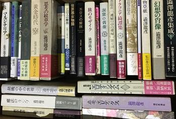 幻想文学・探偵小説・懐かしい児童読み物・ジュブナイルお売り下さい
